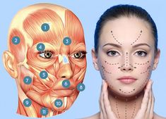 ▪️DERMA CONTOUR Package - Jawline Sculpting with cheekbones can contour and sharpen the facial features. Acne Facial, Facial Care, Beauty Care, Beauty Hacks, Types Of Facials, Oxygen Facial, Facial Exercises, Face Yoga, Face Massage