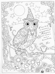 Creative Haven Owls Coloring Book By Marjorie Sarnat Wizard Owl