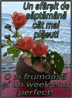 Maria Maria - Google+ Good Morning, Religion, Frases, Pictures, Bom Dia, Buen Dia, Bonjour, Religious Education, Buongiorno