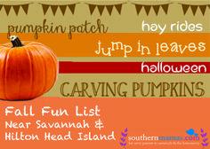 SouthernMamas.com Fall Fun Guide 2014 http://www.southernmamas.com/2014/fall-fun-guide-2014-for-savannah-the-lowcountry/