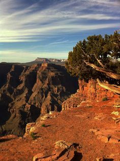 Grand Canyon 2011, Nevada USA #travel #view #orange