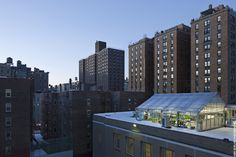 NY Sun Works - rooftop farming in NYC