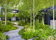 The Cancer Research UK Garden in Chelsea (United Kingdom). By Robert Meyer Back Gardens, Small Gardens, Outdoor Gardens, Amazing Gardens, Beautiful Gardens, Chelsea Garden, Woodland Garden, Garden Architecture, Contemporary Garden