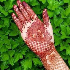 Mehandi design has a Different place in our heart. It enhanced the lady beauty and attract the people itself. Keep this above statement in our mind we come with a great collection of lastest Mehandi Design. Khafif Mehndi Design, Indian Mehndi Designs, Unique Mehndi Designs, Wedding Mehndi Designs, Mehndi Designs For Fingers, Beautiful Henna Designs, Mehndi Images, Mehandi Designs, Unique Henna