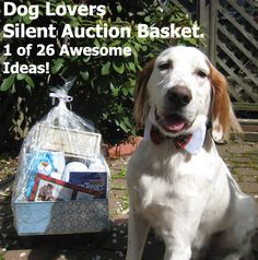A Dog Lovers Silent Auction Basket. One of the 26 detailed Auction Gift Basket Ideas (Also find 52 idea titles for brainstorming!). Check it out here: www.rewarding-fundraising-ideas.com/silent-auction-basket-ideas.html  (Photo by Logan Ingills / Flickr)