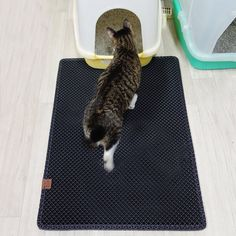 This cat litter mat that significantly reduces the amount of litter around the house. | 19 Awesome Products From Amazon To Put On Your Wish List