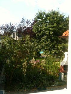 Biotop Cabin, House Styles, Plants, Home Decor, Paradise, Garten, Homemade Home Decor, Cabins, Flora
