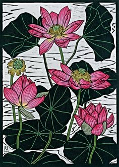 SACRED LOTUS II 49 X 35 CM    EDITION OF 50 HAND COLOURED LINOCUT ON HANDMADE JAPANESE PAPER $850