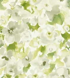 Sanderson Wallpapers - 'Varese', is a beautiful all over floral design in a water colour effect.
