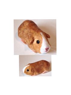 My polymer clay and mixed media guinea pig sculpture by me, Faebymckay...Now available in my Etsy shop.           https://www.etsy.com/shop/faebymckay