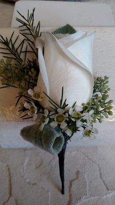 #WhiteRoseBout White rose with lambs ear loop, white wax and seeded eucalyptus boutonniere.