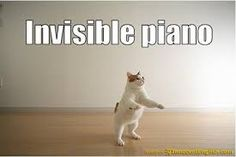 Lol-cat playing an invisible piano. Cute Cats, Funny Cats, Funny Animals, Cute Animals, Adorable Kittens, Animals Dog, Funny Cat Pictures, Animal Pictures, Crazy Cat Lady