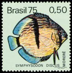 selos brasileiros - Pesquisa Google e2c9a6268da47