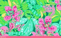 Unofficial Collection Lilly Pulitzer Prints Photo