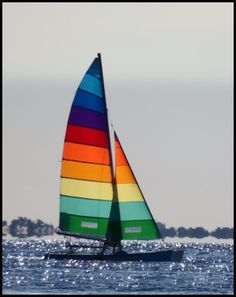 we made a hobie 18 #sail for our client from #Queensland..They are great #Colours . Know more http://goo.gl/pt5waf