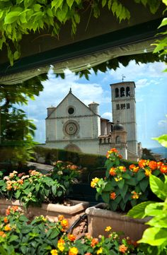 Reflect in Assisi…