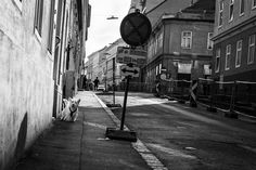Oh Vienna . 2015 . 210 . Nicole Andermatt #Vienna #Wien #streetphotography #urbanphotography #dog