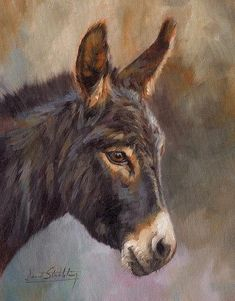 Donkey Print By David Stribbling