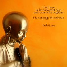 "I find hope in the darkest of days, and focus in the brightest. I do not judge the universe.""  ~ Dalai Lama"