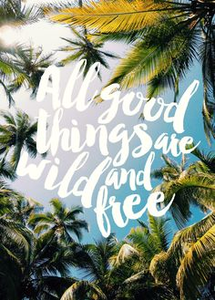 All good things are wild and free // seattlestravels.com @seattlestravels