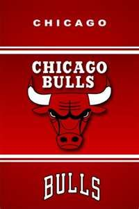 Chicago Bulls is also my favorite team. I can't for get them