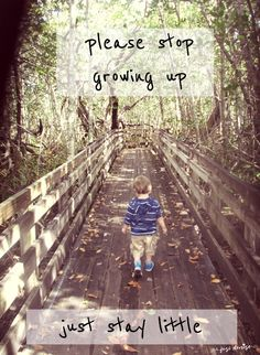Please stop growing up: Just stay little. An open letter to my son on his birthday. Why do you have to grow up sweet angel baby? Can't you just stay chubby-cheeked and blubbery forever? Can't we just spend a few more hours in the rocking chair? Letters To My Son, Please Stop, Open Letter, Mom Advice, Rocking Chair, Little Babies, My Children, Demons, Growing Up