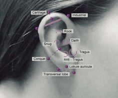 Ear piercings <3