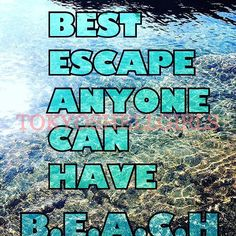 【tokyoshellgirls】さんのInstagramをピンしています。 《B.E.A.C.H. Yes definitely it is. #seashells #seaglass #beach  #beachcombing #japan #miura  #beachlife #love #貝殻 #海 #三浦半島》