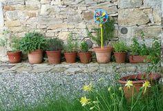 For å få friske og frodige planter må vi gi dem gode forhold å vokse på. Med enkle grep kan du forbedre sjansene til dine planter til å få et lykkelig liv.