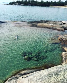 Secret Swimming Spots You Must Visit In Canada Nature's hidden gems. Katherine Cove in OntarioNature's hidden gems. Katherine Cove in Ontario Places To Travel, Places To See, Travel Destinations, Toronto, Ontario Travel, Summer Bucket Lists, Secret Places, Canada Travel, Canada Trip