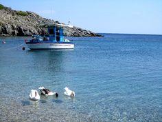 Lesvos Island, North Aegean Sea, 2011