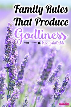 Rules that produce godliness breed character in our children. Visible rules keep both the parent and children accountable. Do your family rules produce godliness? If not, grab your FREE printable here!
