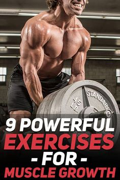20 Best Mr. Olympia Inspiration images  fada9fe63d