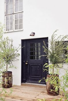 Like the overall look of white walls, dark door and trim, tall spare plants in pots, clean lines