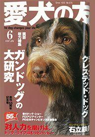 愛犬の友 2007年6月号