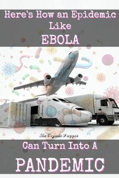 American Epidemic: Origins- An Ebola Prepper Survival Tale