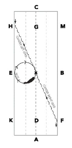 Utilizing a circle after the transition to trot will teach the horse to wait for the aid from the rider before transitioning to the new lead.
