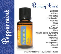 Quick Facts: doTERRA's Peppermint