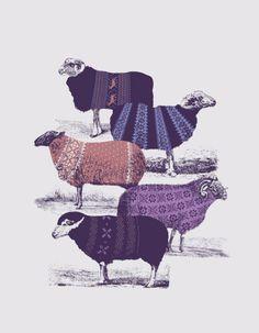 sweatered lambs...very strange