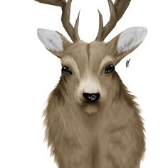 The Deer, for sale in my shop, Redbubble.
