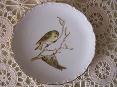 Schumann Bavaria Fine China Collector Plate. Bird Collection. 6-1/2 in. 22 ct. Gold Rimmed