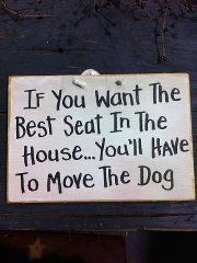 If you want the best seat in the house ... you'll have to move the dog.