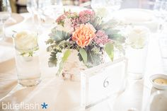 Centerpiece at July wedding at Castle Hill Inn.  Photography by Blueflash Photography.