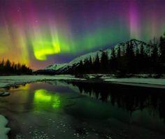 Lights nude polar casey