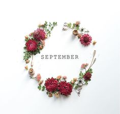I fell so hard that month my body is still in motion. September Birthday, Birthday Month, Sweet September, September Ends, September Flowers, 6 September, Happy Birthday, September Images, September Born Quotes