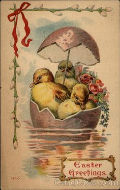 Easter Greetings With Chicks