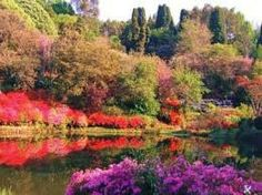 Cheerio Gardens Tzaneen