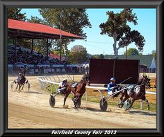 My Quality Time at the Fairfield County Fair 2013 http://www.myqualitytime.net/ #LANCASTER #OHIO #FAIR