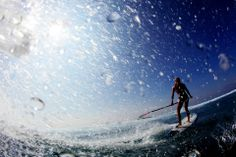 surfing, paddleboarding SUP