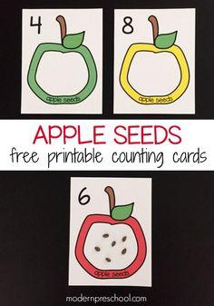 Counting apple seeds! Free printable counting cards (numbers 1-12) for preschoolers | Modern Preschool
